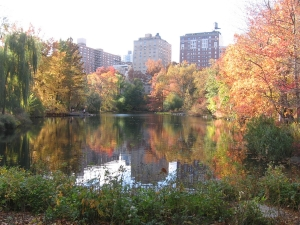 North End of Central Park