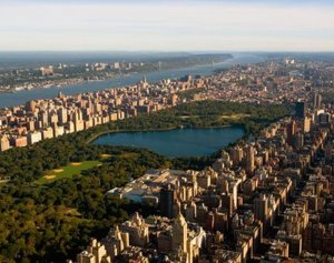 A Bird's Eye View of Central Park