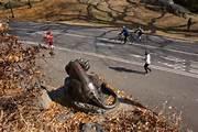 Still Hunt statue in Central Park