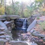 The Ravine in Central Park